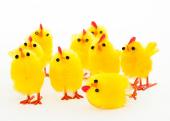 group of easter chickens and the fallen leader