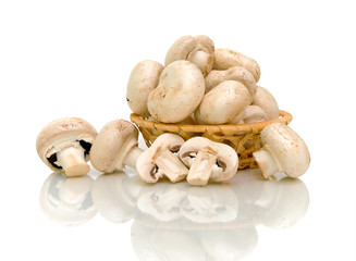 mushrooms (Agaricus) in basket on white background