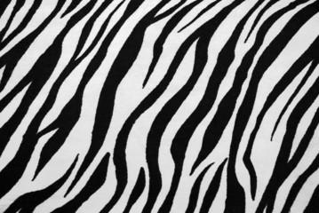 Zebra Textile Texture