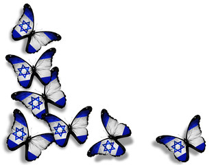Israeli flag butterflies, isolated on white background