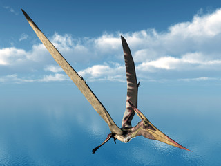 Fliegender Dinosaurier Pteranodon