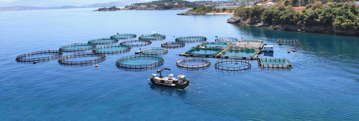 Fish farm Panorama