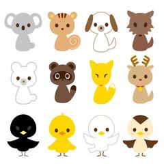動物 鳥 12種類