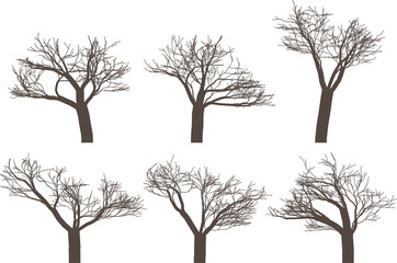 Vector illustration pack with six trees without leafs