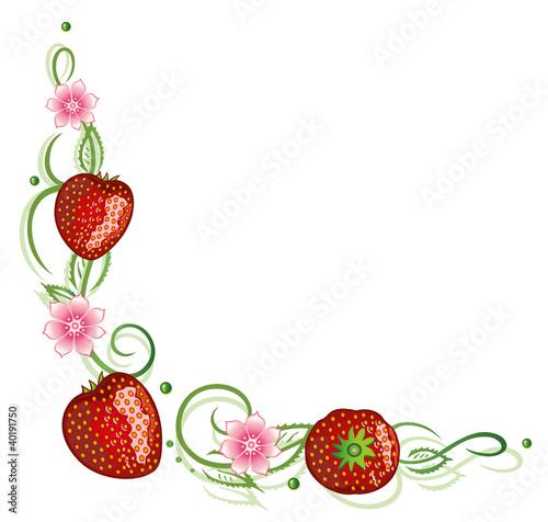 ranke erdbeeren obst fr chte bunt vector stockfotos und lizenzfreie vektoren auf fotolia. Black Bedroom Furniture Sets. Home Design Ideas