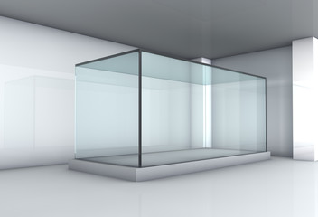 Empty glass showcase in the gallery