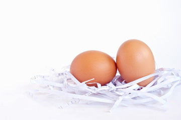 eggs in a white nest on background white