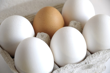 White eggs and brown