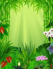 beautiful forest background