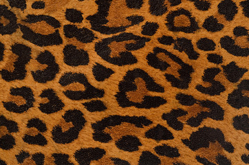 Door stickers Leopard Leopard print pattern