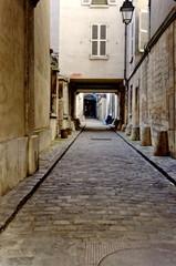 Ruelle pavée, quartier du Marais. Vieux Paris. France.
