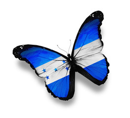 Honduras flag butterfly, isolated on white
