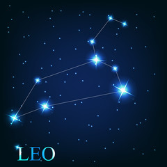 vector of the leo zodiac sign of the beautiful bright stars on t