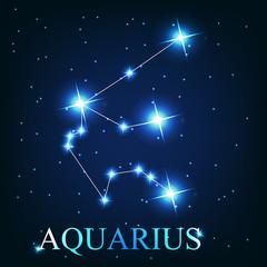 vector of the aquarius zodiac sign of the beautiful bright stars