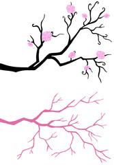 Branch tree in bloom.