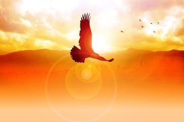 Silhouette illustration of an eagle flying on sunrise