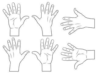 Offene Hand. innen und außenansicht