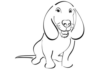 Dachshund vector illustration