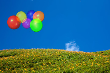 Beautiful balloon with blue sky and flower