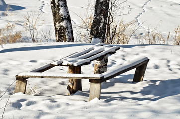 Table and bench in winter forest