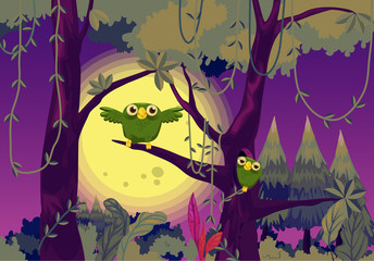 Poster Forest animals Owls at night