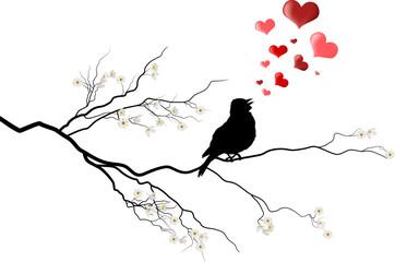 bird on tree flower branch