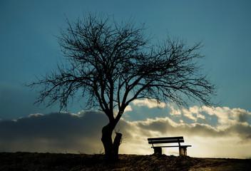 Einsame Winterbank