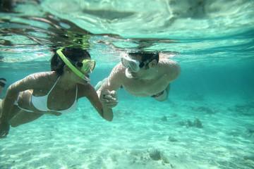 Fototapeta Couple snorkeling in Caribbean waters obraz