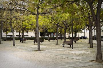 Descanso en el parque