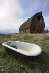 Bathtub in the barnyard.