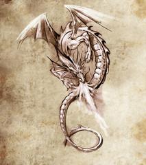 Wall Mural - Fantasy dragon. Sketch of tattoo art, medieval monster
