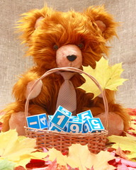 Stock Picture of a Teddy Bear. Stock Pictures Photos Images Pics