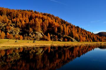 Foto auf Acrylglas Reflexion riflessi autunnali nel lago 2