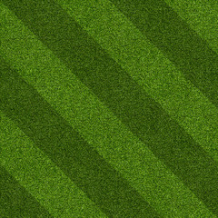 Seamless Artificial Grass Field Texture