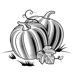 Retro pumpkins black and white