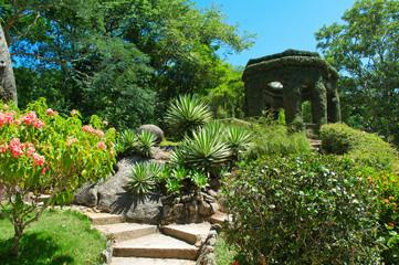 Fotobehang - Botanical garden. Rio de Janeiro