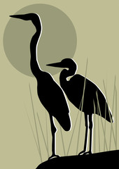 vector herons silhouettes