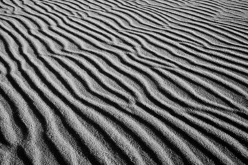 Sand structure in Slowinski National Park
