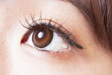 Female eye with brown contact lenses macro