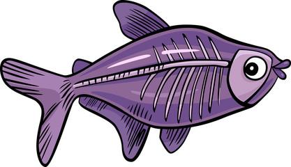 cartoon x-ray fish