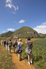 The tourists in Vinales Valley, Cuba