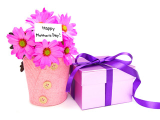 Mother's Day gifts - potted pink daisies and gift box