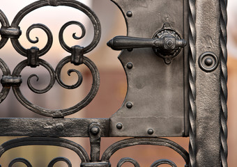 old iron gate with decoration