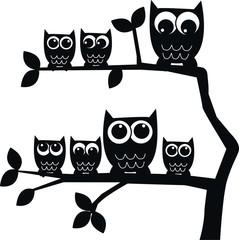 black owls
