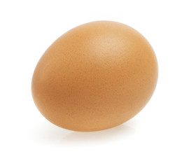 close up of egg on white background with clipping path
