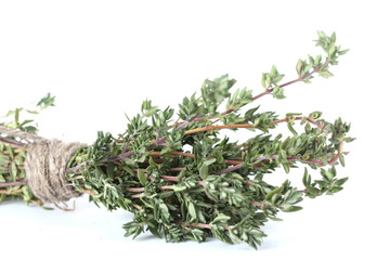 fresh green thyme isolated on white