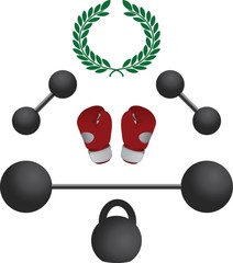 weights and boxer gloves.fourth variant