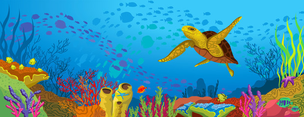 Colored coral reef  and yellow turtle