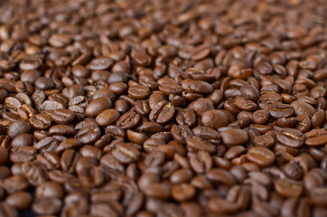 Coffee beans macro shot