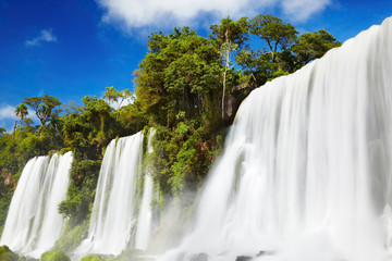 Wall Mural - Iguassu Falls, view from Argentinian side